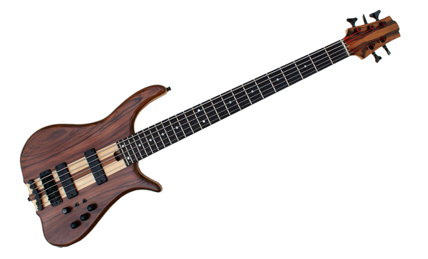 6 string Custom Bass Guitar