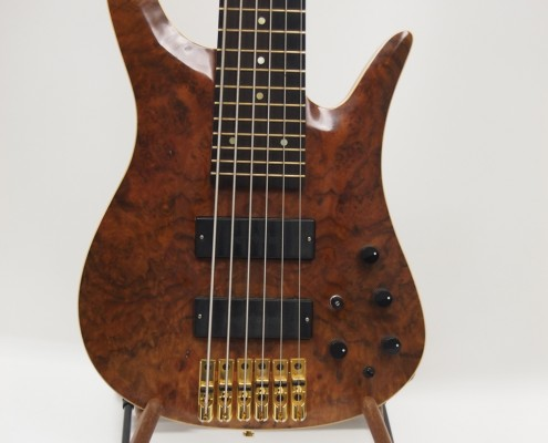 6-string signature bass guitar